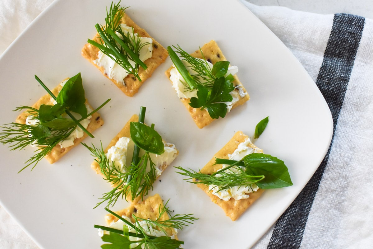Appetizer crackers with cream cheese and fresh herbs on a white plate