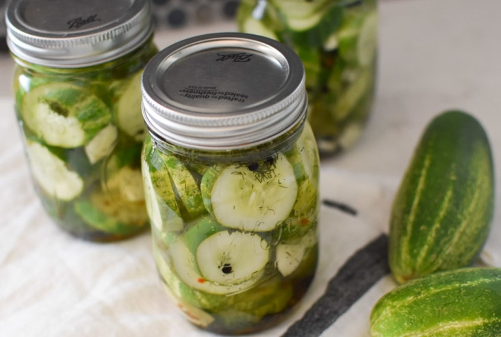 Homemade farmers market dill pickles | quick and easy