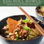 bowl of egg roll filling